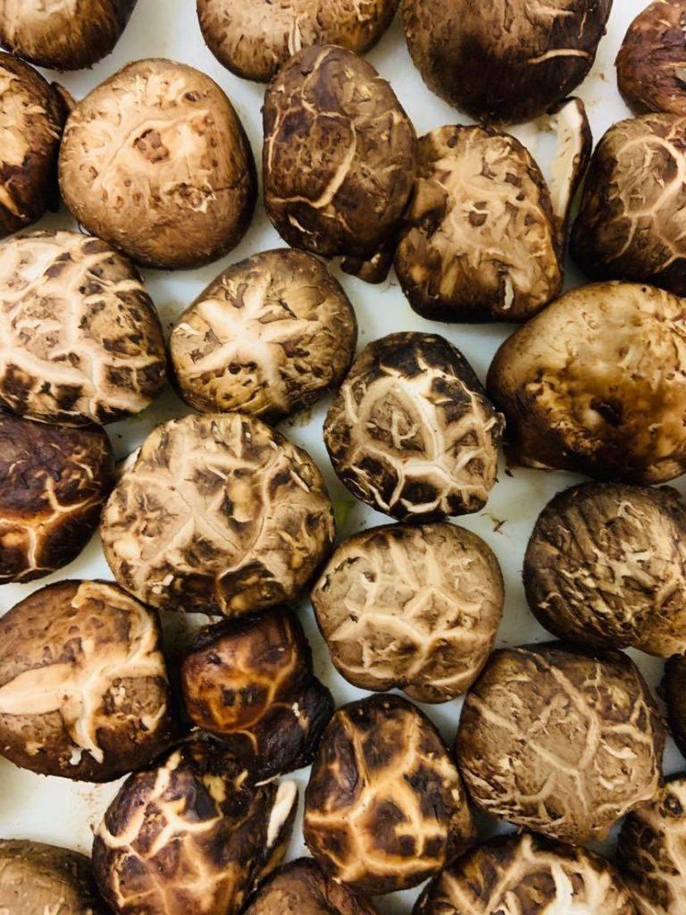 freshly washed mushrooms